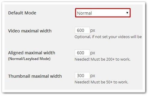 Advanced Responsive Video Embedder デフォルトモード
